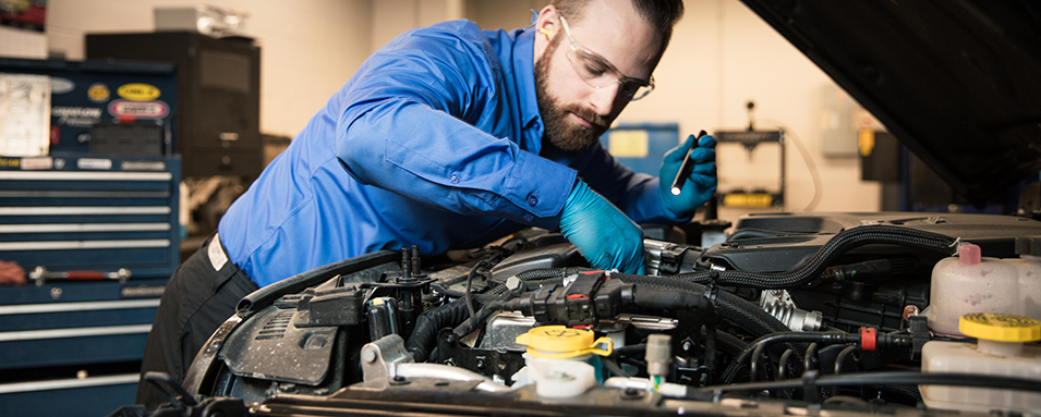 Paying attention to Auto Repair