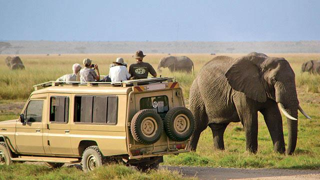 Adventure and Safari Holidays